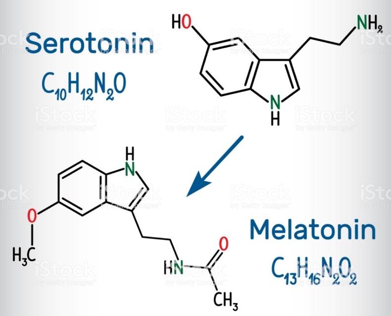 A melatonin kémiai összetétele